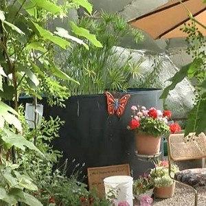 water tank in greenhouse