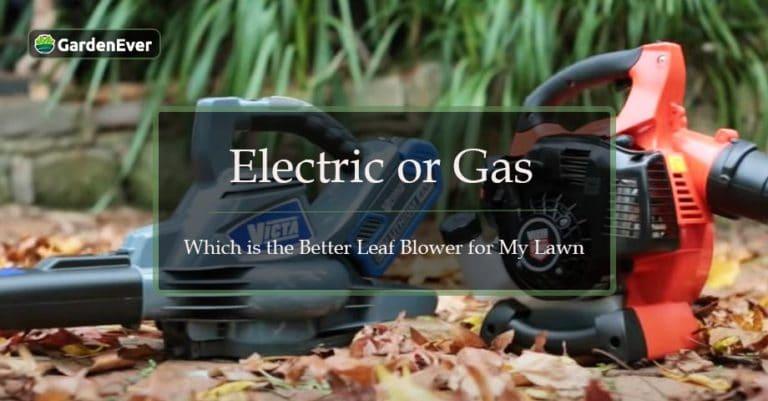 electric vs gas leaf blower