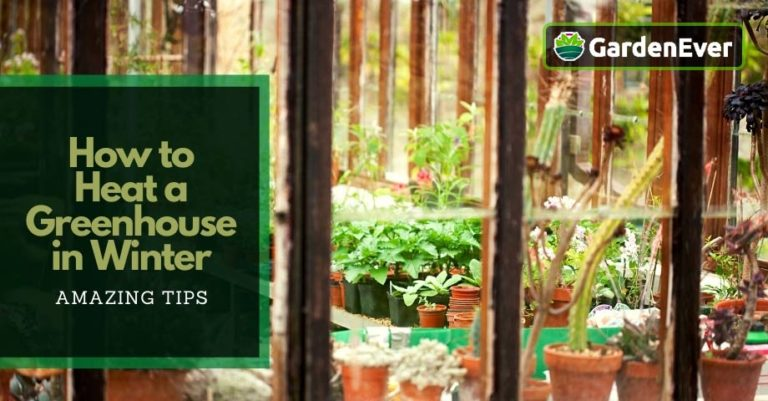 how to heat a greenhouse in winter