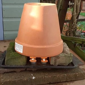 rustic heater using candles for greenhouse