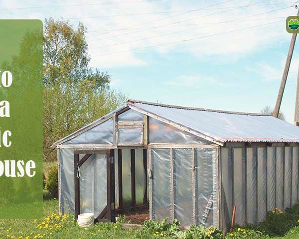 How to Heat a Plastic Greenhouse?